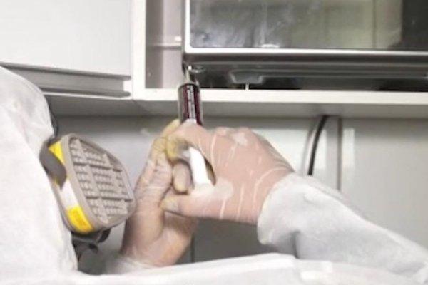 [ANVISA define controle de pragas como atividade essencial durante pandemia do Coronavírus]